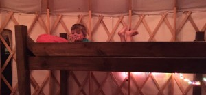 Yurt Bunk Bed